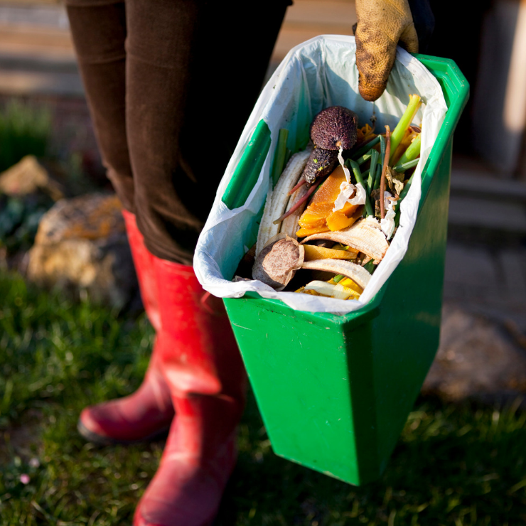 Recycling food waste helps us all tackle climate change, reveals report