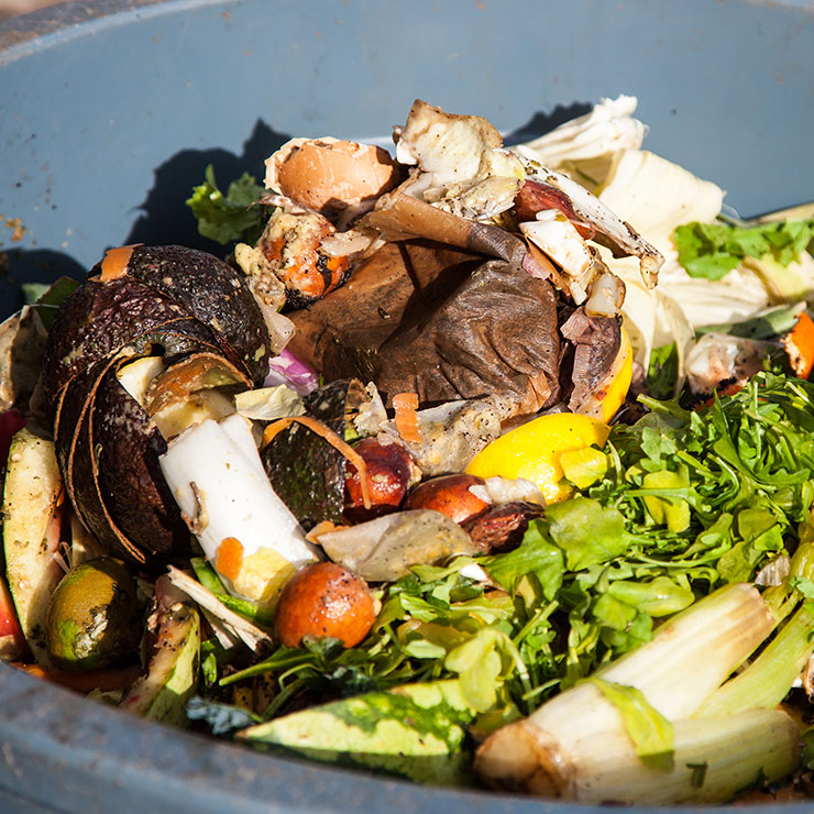 'A-peeling' 40% jump in Scotland's food waste recycling